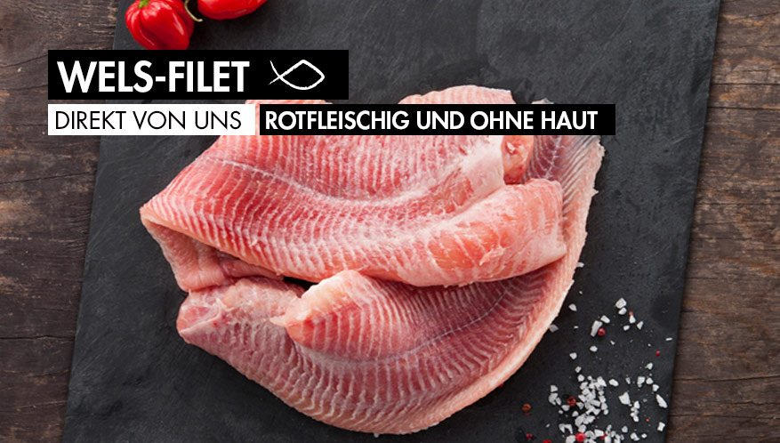 Frisches Welsfilet - rotfleischig